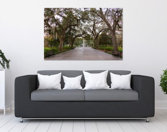 Savannah Forsyth Park Photo Print | Wall Art | Nature and Landscape Photography | (5x7, 8x12, 12x18, 16x24, 20x30, 24x36, 40x60)