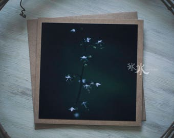 Floral Photo Card - Forest wildflower