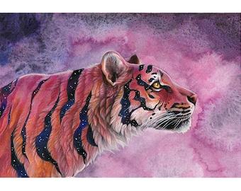 A4 Print  'Star Tiger'