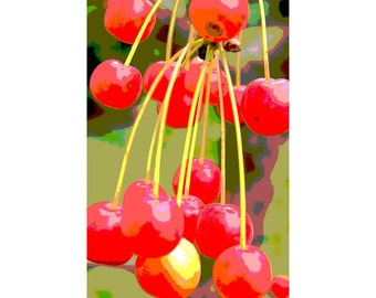 Cherries 3 - nature photography