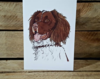 Springer Spaniel blank greeting card from original pen drawing A6