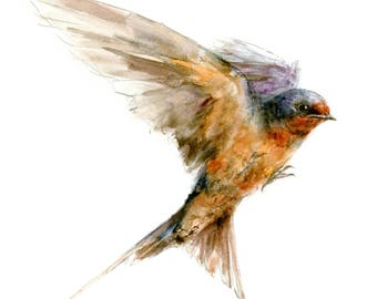 Barn Swallow watercolor painting - bird watercolor painting - 5x7 inch print - 0129