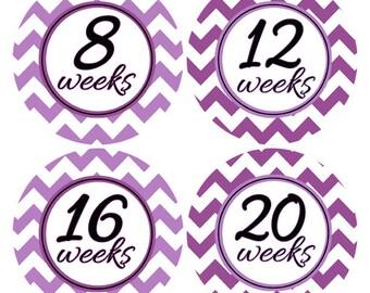 Chevron Belly Stickers, Pregnancy Weeks, Purple Baby Bump Stickers, Belly to Baby, Pregnancy Week Stickers, Gender Reveal Stickers (354)