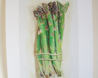 PRINT of original illustration ' Asparagus', food illustration, kitchen print, watercolour painting, green vegetables