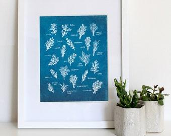 Herb Print- illustrated herbs in blue. sun print. art print . kitchen decor. garden. wall decor