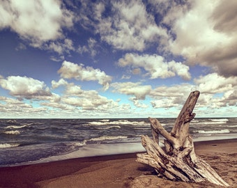 Presque Isle beach driftwood, HDR photograph, Blue and tan, fine photography print, Driftwood