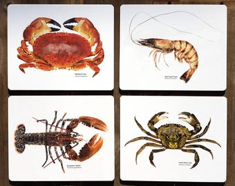 Set of 4 crab, lobster, and prawn placemats