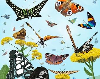 Key West, Florida - Butterfly Garden - Lantern Press Artwork (Art Print - Multiple Sizes Available)
