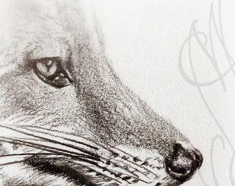 "Martinefa's original drawing presented in hand personalised frame - Fox ""Renard"""