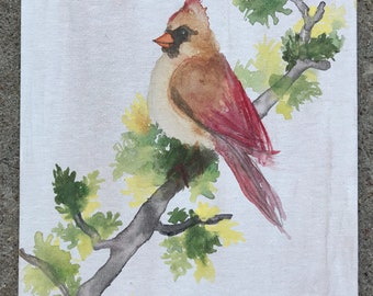 Cadinal bird watercolor nature with tree