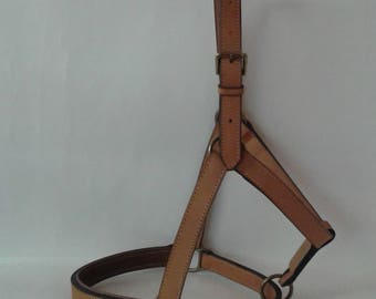 Halter leather vegetable tanned English