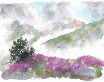 Original watercolor pine and Heather