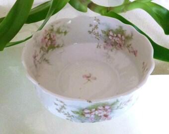 Antique Theodore Haviland Limoges France Bowl Schleiger 146 Apple Blossom Pattern Rare