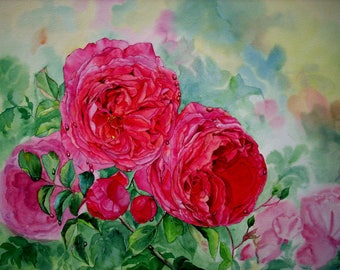 Othello Roses- Wall art