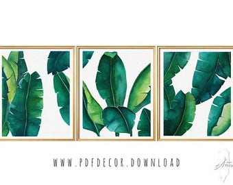 Tropical Leaves Set, Banana Leaf, Set of 3 Wall Art, Set of 3 prints tropical, Set of 3 watercolor, Watercolor Print Set, Botanical Prints