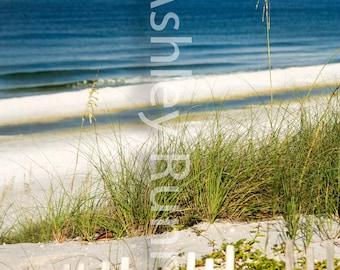 Beach in Seaside on 30A