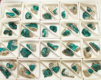 40x DIOPTASE Natural crystal 56 grams on matrix, green chakra stone #222P - KAZAKHSTAN, Altyn Tube