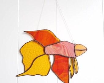Coral Betta Fish - Free Shipping!