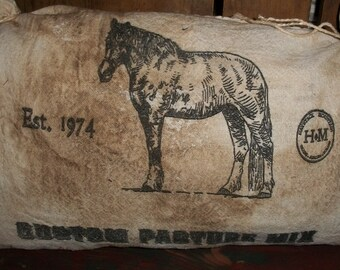 """Primitive Seed Sack """"Horse"""" Pillow"""