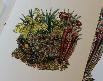PRE-ORDER: Bog Turtle and Sarracenia Print
