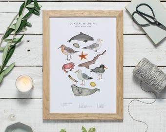 Animal wall art - Seashore decor - coastal wildlife print - animal art - coastal decor - coastal wall art - nursery art - animal gift