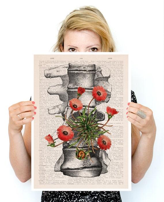 Vertebrae bones, anatomical art, Human anatomy art, r, Wall decor art, Giclee poster, Wall art house wall art, SKA097PA3