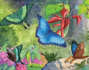 Tropical Butterfly, 5 blank note cards with envelopes
