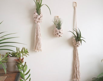 Natural Cotton Macrame Plant Hanger / Air Plant Pods / Knotty Knotty Macrame