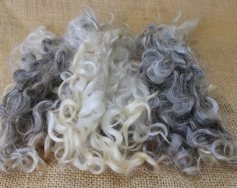 Cotswold Natural Colored Locks Wool Fleece