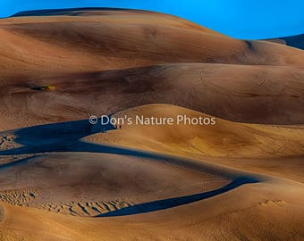 Great Sand Dunes National Park, Colorado. 16 X 20  #3014