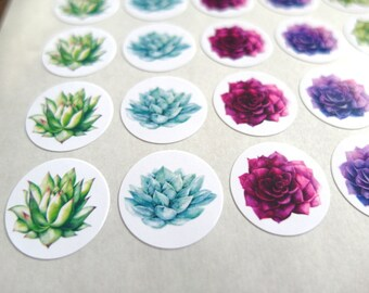 Succulent Stickers - Made to Order