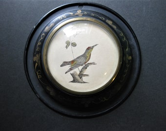 Small Tin Framed Bird Print, Gold Floral on Black Tin