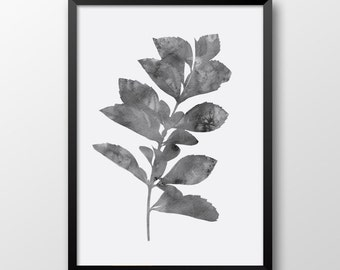 Watercolor leaf print, Gray print, Wall decor, Wall art print, Printable plant, Black and white print 151