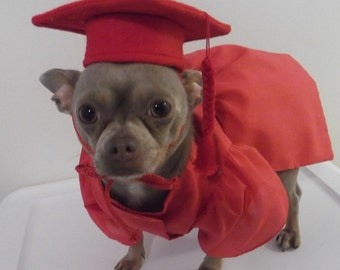 Halloween Dog Costume, Pet Graduation Cap and Gown, Dog Cap and Dog Graduation Gown, Pet Costume, Dog Costume, Pet Clothes