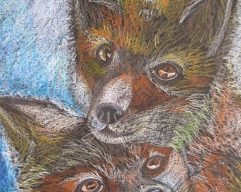 Drawing 2 Foxes original colored pencil drawing