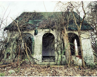 Abandoned Filling Station Photo - Overgrown Cottage Style Gas Station Photograph - Lost America Documentary Art by Liberty Images - Desolate