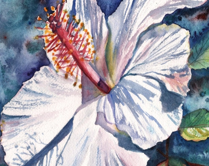 White Hibiscus 8x10 Art Print, tropical hibiscus art, Kauai Hawaii, Hawaiian flowers, Hawaiian flower art, Hibiscus giclee prints