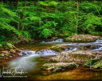 Springtime Mountain Stream E239. Peace, Peaceful, Relaxation, Relaxing, Calm, Calming, Stream, Mountains, Green, Springtime