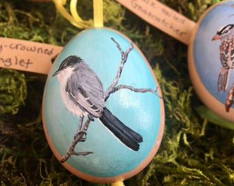 Hand-Painted Eggs (Birds of Arizona)- Only 3 Left!