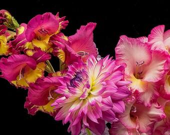 Still Life Photo, Flower Image, Garden Art, Garden Photos, Flower Art,