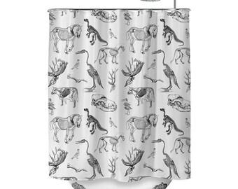 Animal Skeletons White Shower Curtain