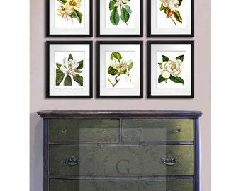 Magnolia art print, Spring flowers Decor, Magnolia prints, Botanical Print set of 6 prints, Southern Decor Art, Hostess Gift, gift for mom
