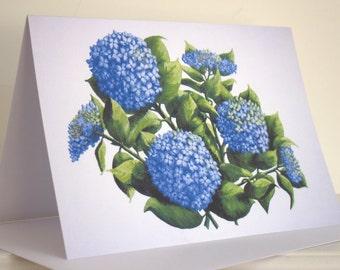 Giant Blue Hydrangeas A5 card