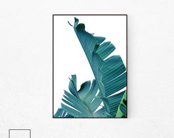 Tropical Leaf Poster, Tropical Leaf Print, Tropical Plant Poster, Banana Leaf Poster, Palm Leaf Print, Banana Leaf Print, Botanical Poster