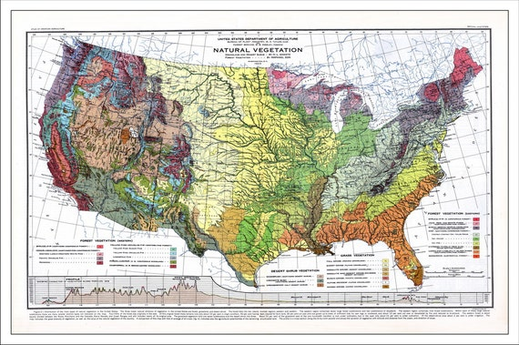 USA Map Map of the USA World Map America Map Topo Map