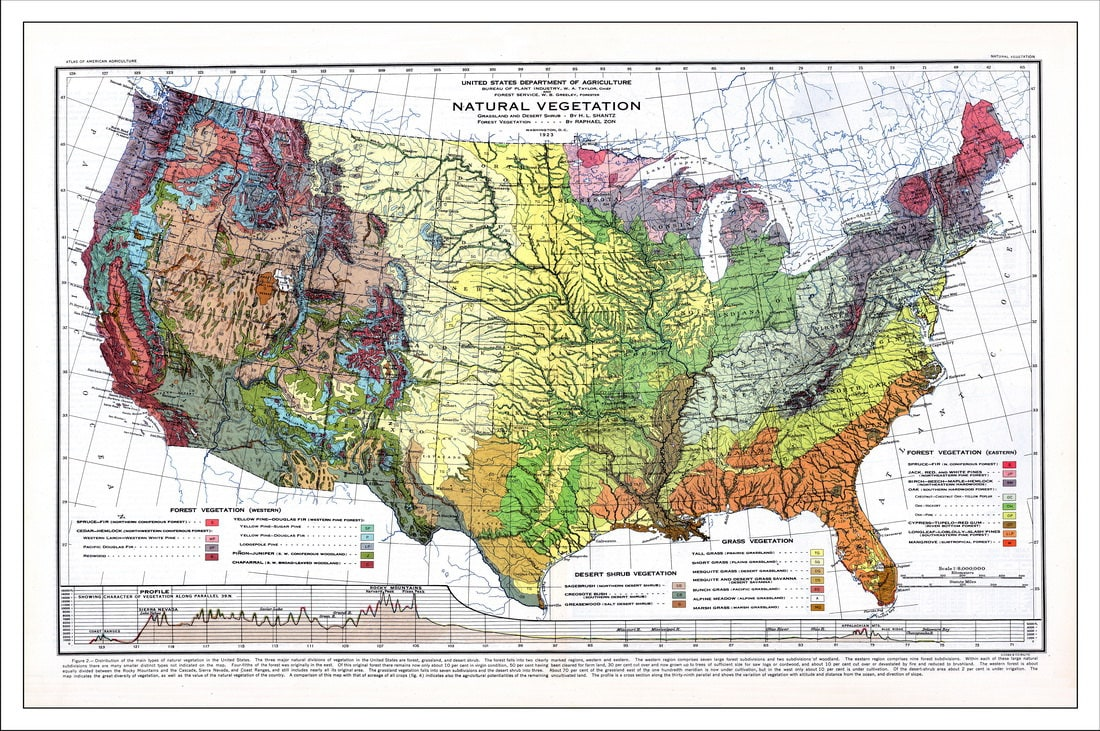 Usa map map of the usa world map america map topo map historic usa map map of the usa world map america map topo map historic map vintage map old map gumiabroncs Image collections