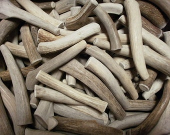 5 natural antler dog chew treats pet food deer toy real shed antlers wedding