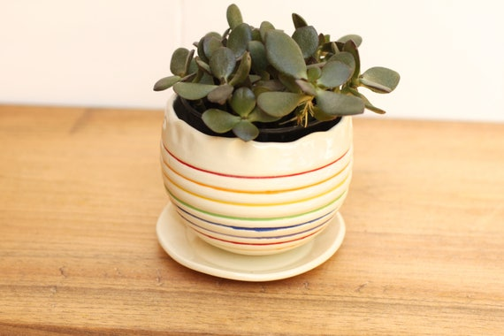 rainbowl succulent planter // cactus planter // succulent pot // ceramic pot // flower pot