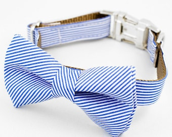 Bow Tie Dog Collar - Blue and White Stripe
