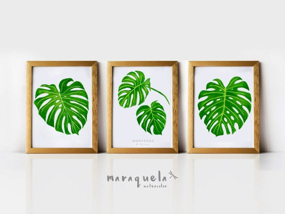 DISCOUNT SET Monstera Leaves Watercolor, Tropical Plants Botanical art, Green leaves Nature art set, Spring decor, Monstera leaf watercolor